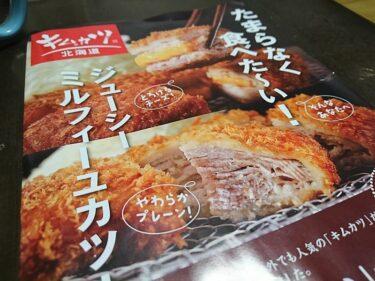 帯広の宅配弁当を初体験!キムカツはボリューム満点!味満点でした!